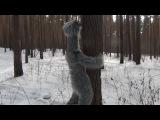 Дибилизм про ленивца